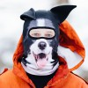 TOTALLY FETCHING COLLIE DOG SNOW MASK